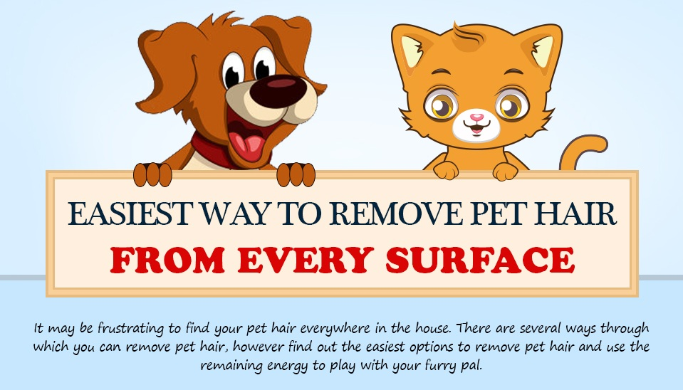 Ways-to-remove-pet-hairs-from-home