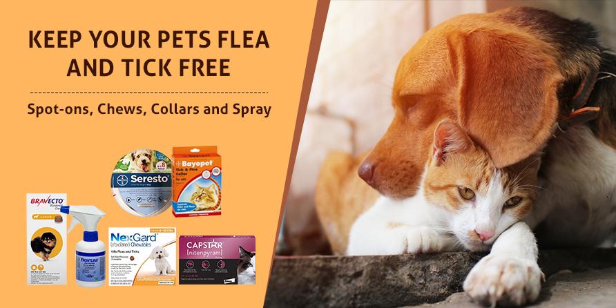 Keep Your Pets Flea And Tick Free