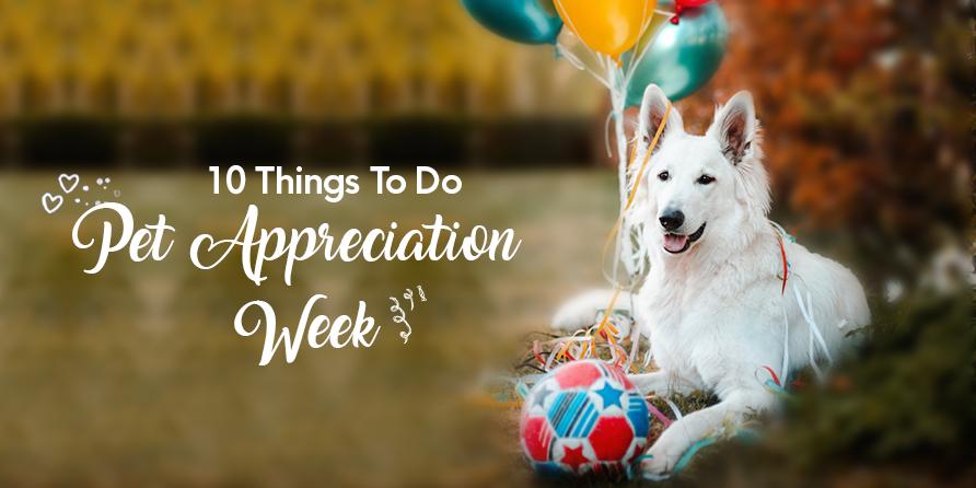 Pets-Appreciation-Week